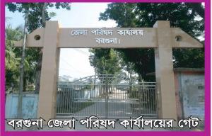 ZP gate